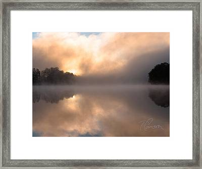 Framed Print featuring the photograph I Brood by Tom Cameron