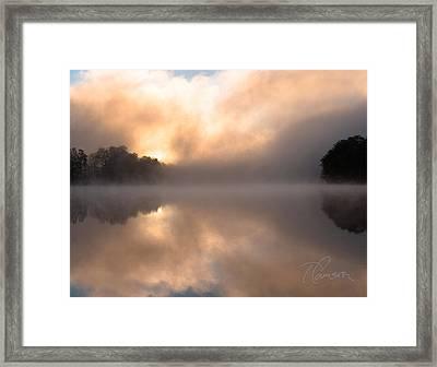 I Brood Framed Print by Tom Cameron