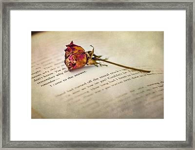 I Came To The Answer Framed Print