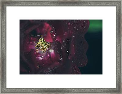 I Can Feel Your Heart Beating Framed Print by Laurie Search