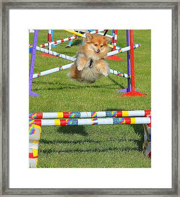 I Can Fly Framed Print