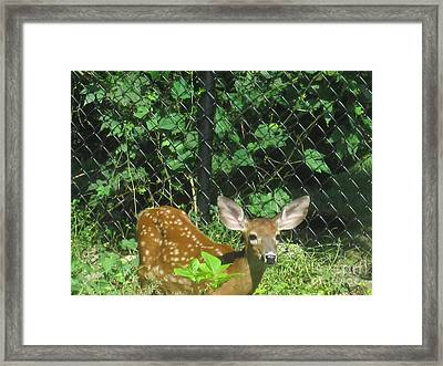 I Can Hear You Framed Print