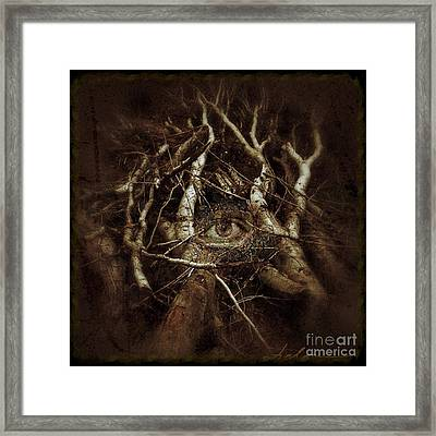 I Can See Clearly Now  Framed Print by Delona Seserman