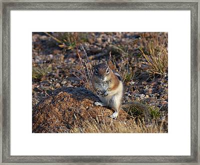 I Can Stare To Framed Print