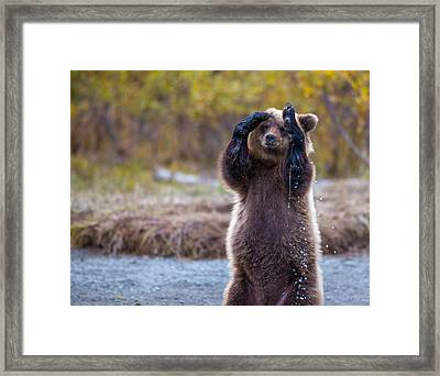 I Can't Bear To Look Framed Print