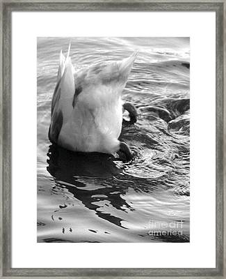Framed Print featuring the photograph I Can't Hear You... by George Mount