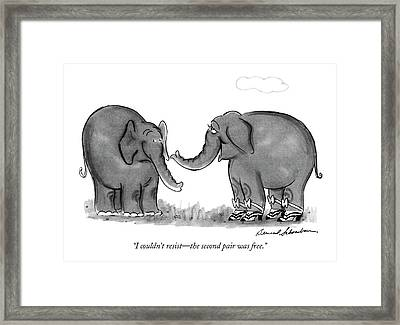 I Couldn't Resist - The Second Pair Was Free Framed Print by Bernard Schoenbaum