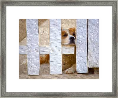 I Didn't Mean To Do It. Framed Print
