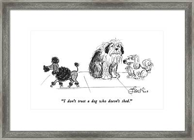 I Don't Trust A Dog Who Doesn't Shed Framed Print by Edward Frascino