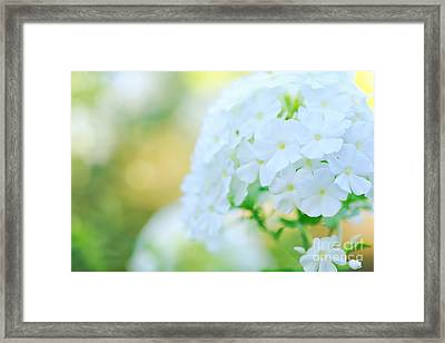 I Dream In Color Framed Print