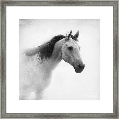 I Dream Of Horses Framed Print by Betty LaRue