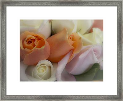 I Dream Of Roses Framed Print by Kaleidoscopik Photography