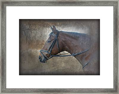 I Dreamt Of Thee Framed Print by Renee Forth-Fukumoto