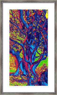I Feel Blue Framed Print