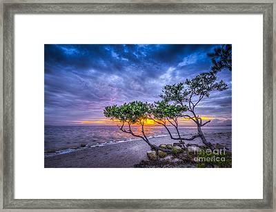 I Feel It Framed Print by Marvin Spates