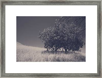 I Feel You Watching Over Framed Print by Laurie Search