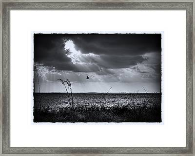 I Fly Away Framed Print by Marvin Spates