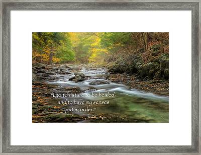 I Go To Nature Framed Print by Bill Wakeley