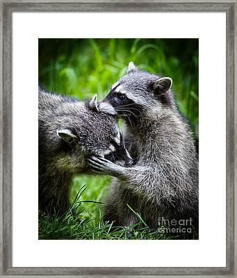 I Got A Really Big Secret....i'll Whisper It...... Framed Print