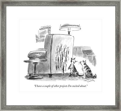 I Have A Couple Of Other Projects I'm Excited Framed Print by Mike Twohy
