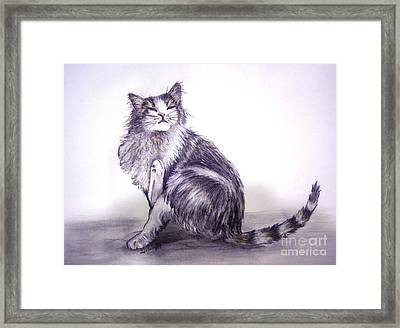I Have An Itch Framed Print