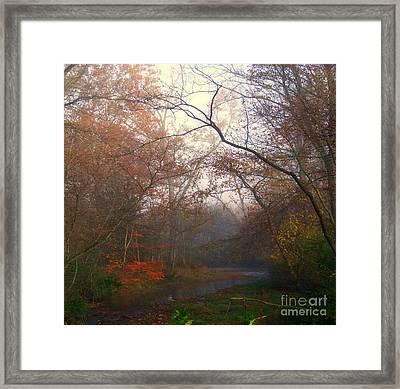 I Have Color Framed Print