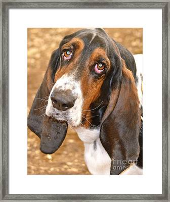 I Have Eyes For You Framed Print
