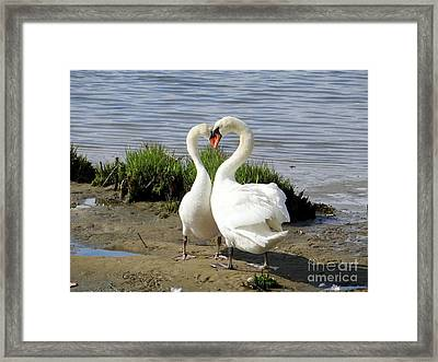 I Heart You Framed Print by Ed Weidman