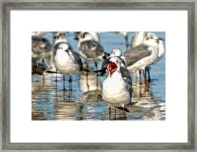 I Just Gotta Be Me Framed Print by Rich Leighton
