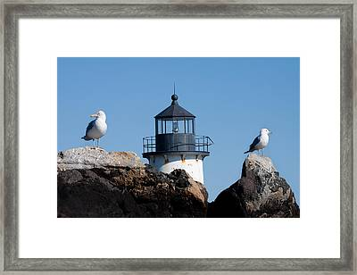 I Know Theres A Lighthouse Around Here Somewhere Framed Print