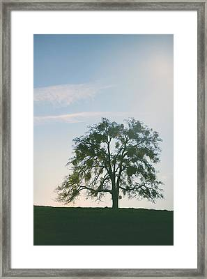 I Live And Breathe For You Framed Print by Laurie Search