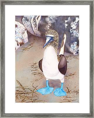 I Love Boobies Framed Print by Amanda Schuster