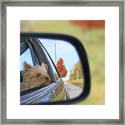 I Love Going Bye-bye Framed Print