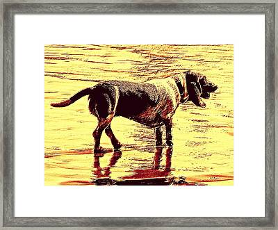 I Love Golden Oldies Framed Print by Brian D Meredith
