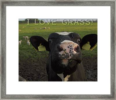 I Love Grass --said The Cow. Framed Print