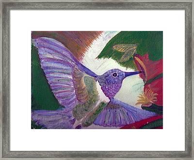 I Love Hummingbirds  Framed Print by Anne-Elizabeth Whiteway