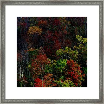 Framed Print featuring the photograph I Love October by Eric Switzer