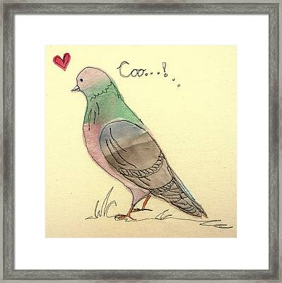 Pigeon Fancier Framed Print by Hazel Millington