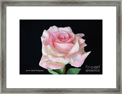 Framed Print featuring the photograph I Love Us by Jeannie Rhode