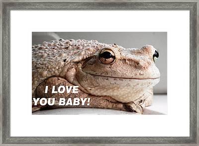 Frog Declaration Of Love Framed Print
