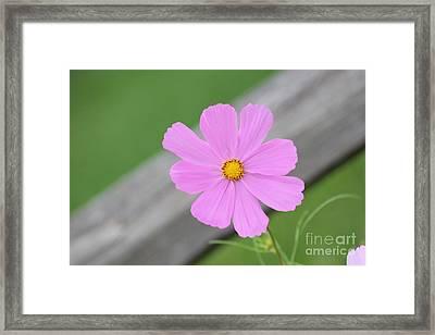 I Love You Flower Framed Print