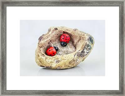 I Love You - Says Ladybugs Framed Print by Gynt
