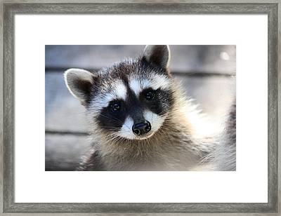 I Love You Too Framed Print