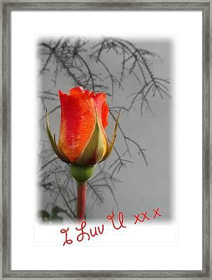 I Luv U Framed Print by Val Byrne