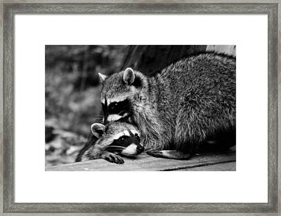I Need Some Help Mommy Framed Print by Kym Backland