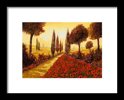 Poppy Fields Framed Prints