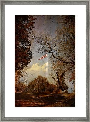 I Pledge Allegiance Framed Print