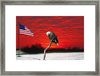 I Pledge Allegiance Framed Print by Randall Branham