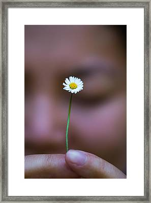 I Praise Thee Daisy Framed Print by Mike Lee