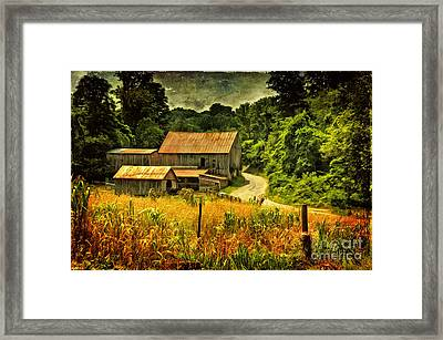 I Remember It Was In The Summer Framed Print by Lois Bryan